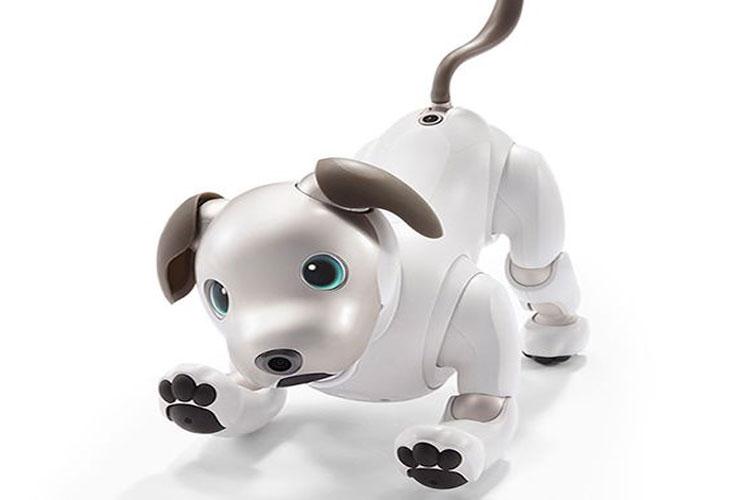 سونی نسخهی جدید Aibo روبات حیوان نمای خود را معرفی کرد