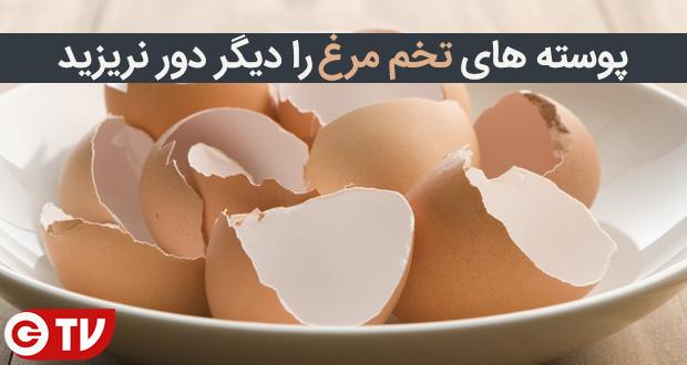 پوست تخم مرغ قابل خوردن است، آن را دور نریزید (گجت تی وی)