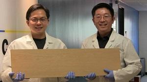ساخت چوب متراکم با سختی ۱۰ برابر فولاد