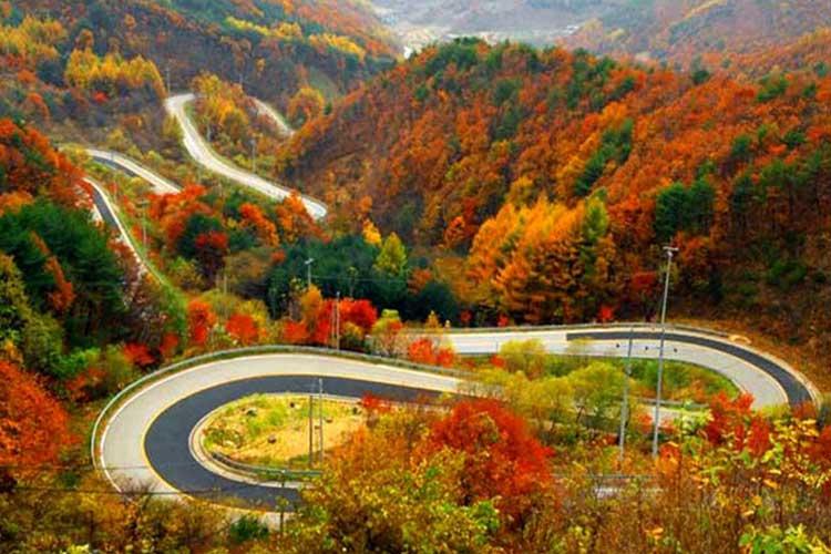 جاده چالوس ؛ مسیری که از مقصد جذاب تر است!