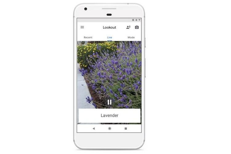 گوگل اپ Lookout را برای کمک به افراد دارای اختلال بینایی توسعه می دهد