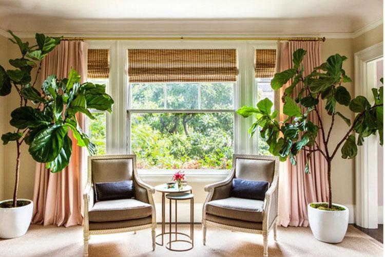 دکوراسیون داخلی خانه مانند یک دیزاینر حرفهای با ۶ اصل اساسی