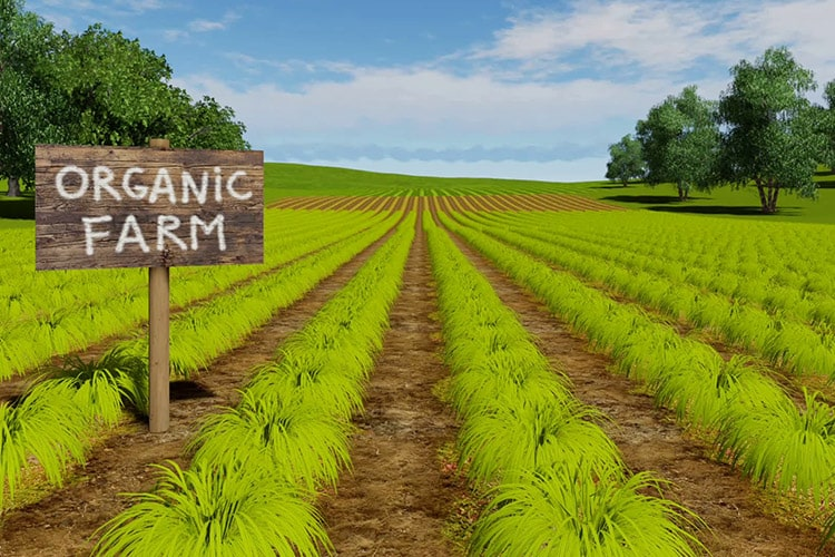 آیا غذاهای ارگانیک تاثیر اقلیمی بدتری دارند