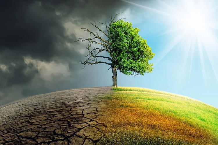 گرمای شدید تابستانی استرالیا، پژوهشهای آبوهوایی را سرعت بخشید